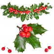 Christmas garland of european holly Ilex isolated on white background - Stock Photo
