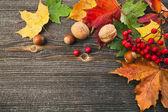 秋の紅葉とコピー スペースを持つ木製テクスチャ背景上ナット — ストック写真