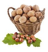Walnuts in basket — Stock Photo