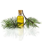Bottle of fir tree essential oil — Stock Photo