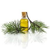Bottle of fir tree essential oil — Stock Photo