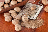 Nutmeg with steel hand grater on wooden background — Stock Photo