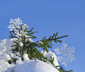 Fir branches in the snowdrift with Christmas snowflake against the blue sky — Stock Photo