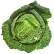 Savoy Cabbage head Isolated on White Background — Stock Photo #21189213