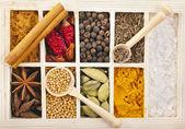Coleção de variedade de condimentos em pó em colheres no fundo da caixa de madeira — Foto Stock