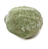 Moldy lemon texture isolated over white background — Stock Photo