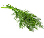 Bunch dill herb isolated on white background — Stock Photo