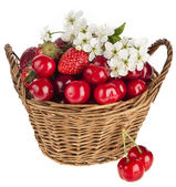 Sweet strawberry and cherries with flowers in basket isolated on white background — Stock Photo