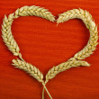 Frame heart shape symbol of wheat ears on red texture background — Stok fotoğraf