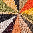 Radiate, rays of different beans, legumes, peas, lentils — Stock Photo #21190631