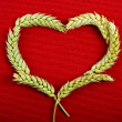 Frame heart shape symbol of wheat ears on red texture background — Stock Photo