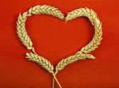 Rám symbol srdce tvar uší pšenice na červené textury pozadí — Stock fotografie