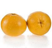 Two Fresh Yellow Grapefruit isolated on white background — Stock Photo
