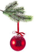 Red Christmas ball with fir twig — Stock Photo