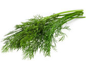 Pęczek koperku zioło na białym tle — Zdjęcie stockowe