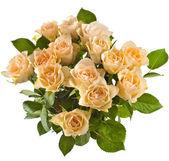 Border of Wedding bouquet cream beige roses isolated on white background — Stock Photo