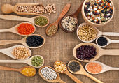 Powder spices on spoons on table background — Stock Photo