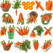 Carrots food collection set isolated on white background — Stock Photo