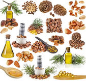 Cedar pine cones , nuts , oil glass bottle , isolated on white background — Stock Photo