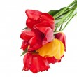 Beautiful bouquet of colored tulips isolated on white background — Stock Photo #23528891