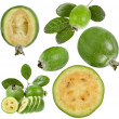 Collection set of Feijoa (Acca sellowiana) - Pineapple Guava — Stock Photo