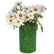 Chamomile flower bouquet in rolled green grass vase — Stock Photo #25340795