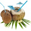 Coconut drink with a straw and palm leaf - Lizenzfreies Foto