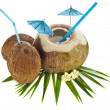 Coconut drink with a straw and palm leaf - Stockfoto
