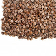 Buckwheat raw — Stock Photo