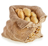 Ratte potatoes in sack bag — Stock Photo