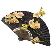 Old Black Decorative Japanese Paper Fan — Stock Photo