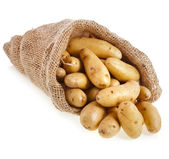 Ratte potatoes — Stock Photo