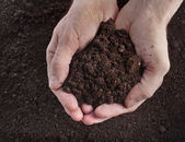 Hand holding soil — Stock Photo