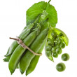 Fresh green pea in the pod — Stock Photo
