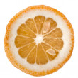 Slice oranges close up macro shot — Stock Photo