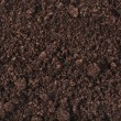 Stock Photo: Soil surface background