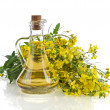 Flower of a mustard, Rape blossoms with bottle decanter oil, isolated on white background — Stock Photo #28461891