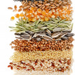 Cereal Grains and Seeds : Rye, Wheat, Barley, Oat, Sunflower, Corn, Flax, Poppy, border closeup on white background — Stock Photo