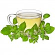 Tea cup with mint leaves isolated on a white background — Stock Photo #28462409