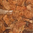 Coconut Coir Husk Fiber Chips Surface border close up background — Stock Photo
