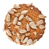 One cookie with seeds close up macro shot isolated on white background — Stock Photo