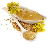 Mustard dish sauce , seeds and mustard flower — Stock Photo