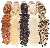 Superficie vista dall'alto di riso misto da vicino trama macro isolato su sfondo bianco — Foto Stock