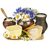 Dairy milk products in pottery, isolated on white background — Stock Photo