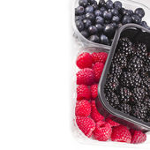 Border of Ripe BlackBerries in plastic container box, isolated over a white background — Stock Photo