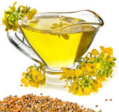 Flower Oil in gravy boat and mustard flower isolated on white background — Stock Photo