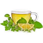 çay bardağı ile beyaz bir arka plan üzerinde izole nane yaprakları — Stok fotoğraf