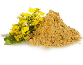 Pile of mustard powder isolated on white background — Stock Photo