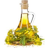 Flower of a mustard, Rape blossoms with bottle decanter oil, isolated on white background — Stock Photo