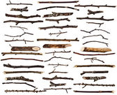 Collection set of dry wood branches isolated on a white background — Stock Photo